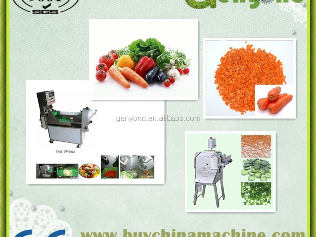 small capcacity electric vegetable cutter