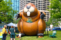 2016 Hot sale giant inflatable beavers for advertising