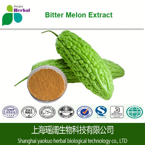 Herb bitter melon lower blood pressure /bitter melon plant extract for lower blood pressure /drinks lower blood pressure