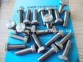 Hex Head Titanium Bolt