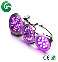 Waterproof IP68 RGB or Single Color 12w 24w 36w Stainless steel LED Pool Light with 3 Years Warranty