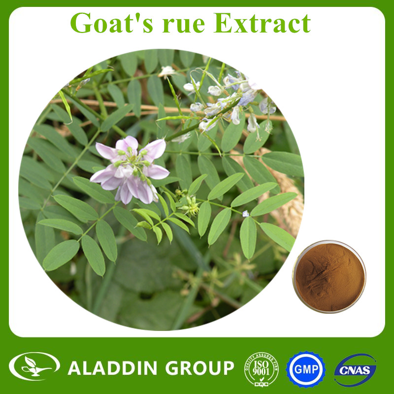 Water Soluble Pure Natural Goat's rue Extract