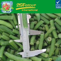 Hot Sale IQF fresh green beans competitive price