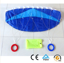 dual line polyester 120*55cm soft power bule kite
