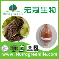 high quality organic 95% grape seed extract powder opc