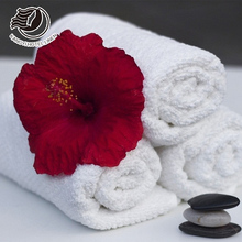 Personalized 40x75cm Cotton Embroidered Jacquard Logo Hotel Textile Hand Towel