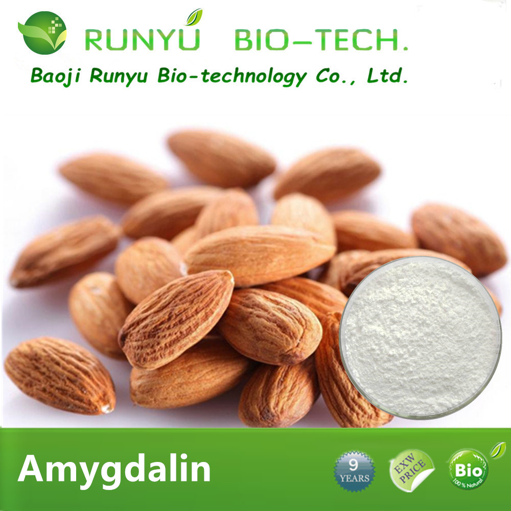 Large-scale plant base Bulk price herb medicine amygdalin b17 vitamin