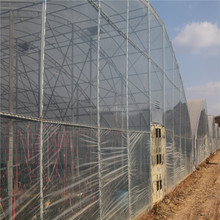 0.03 - 0.2 mm Transparent Plastic Agricultural Greenhouse Cover Jumbo Roll PE Film with UV