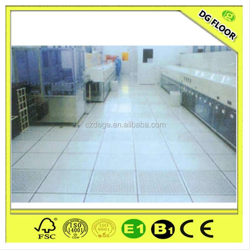 Changzhou Factory Epoxy Floor Coating Anti-static Access Flooring
