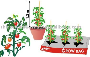 Grow Bags for Hydroponics