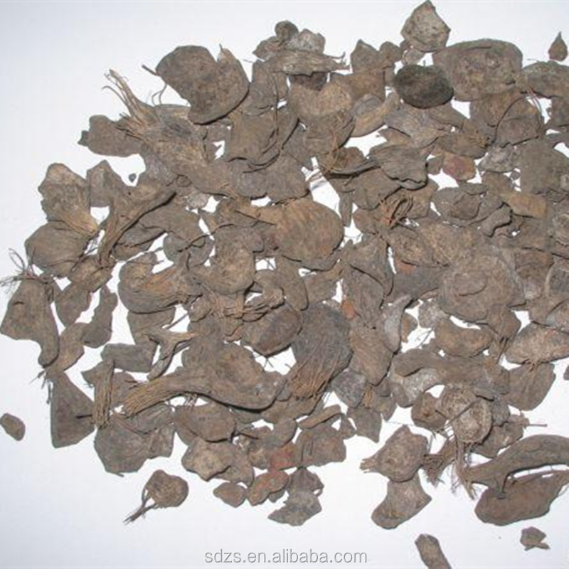 comprehensive uses of palm kernel shell
