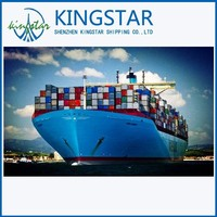 forwarder lcl cargo exporters from china shenzhen guangzhou/shanghai/ningbo etc