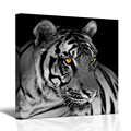 1 Panel White Tiger Canvas Painting Gold Eye Animal Pictures Print on Canvas Home Decor for Living Room