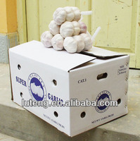 2013 china garlic price for international market