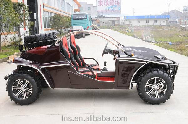 TNS fashionable design and hot selling off road mini buggy
