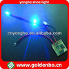 LED Flashing Shoe With Light For