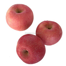 New Crop China Fresh Red Apple Fruit Export Wholesale Price
