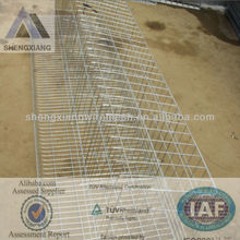 (TUV certificated)shengxiang cages laying hens(factory)