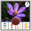 Pharmaceutical ingredient Saffron Crocus Extract / Saffron Extract / 0.4% Safranal