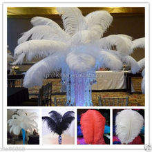 High quality wedding decoration colorful ostrich feathers