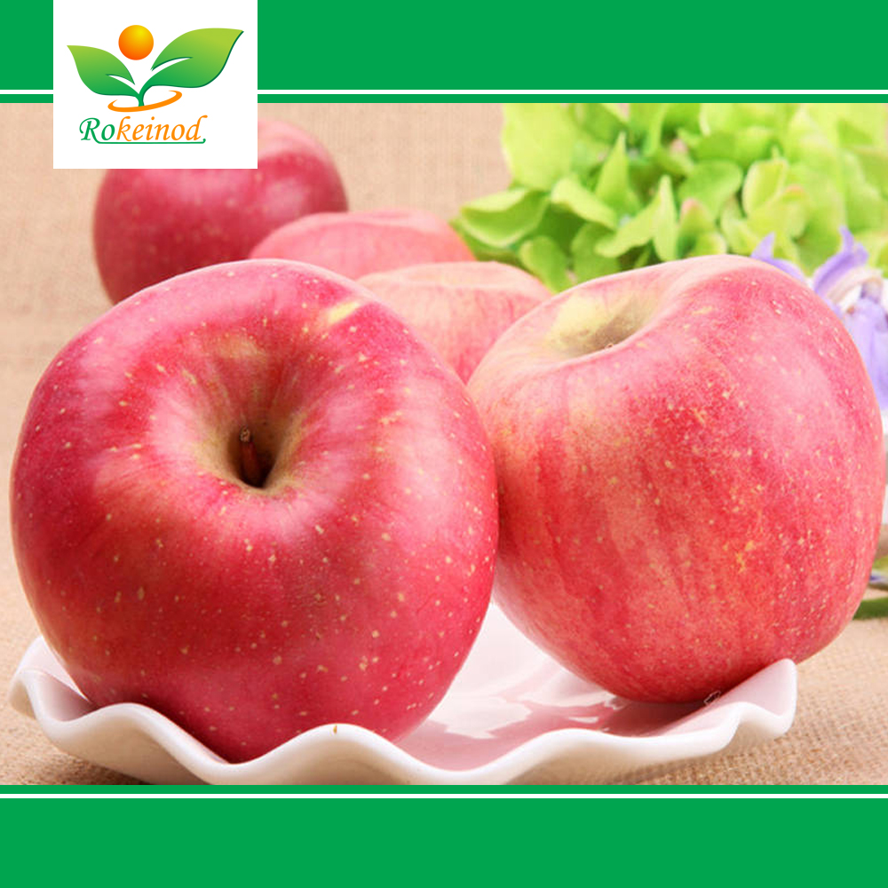 Hot-sell Natural Planting High Quality apple
