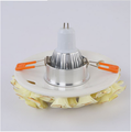 Continental simple champagne LED Downlight LED Spotlight Alice