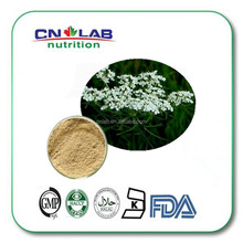 Osthole /Cnidium Monnieri Extract/Osthole Powder On Sale