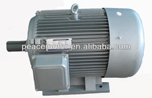 AC motor electric vehicle