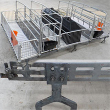 China Supplier Galvanized pig farming equipment for pig nursery pen