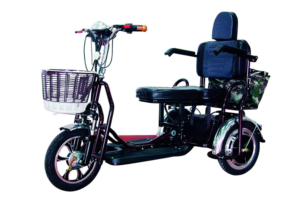 Double seat 48v electric passenger tricycle motorcycle 3 wheeler