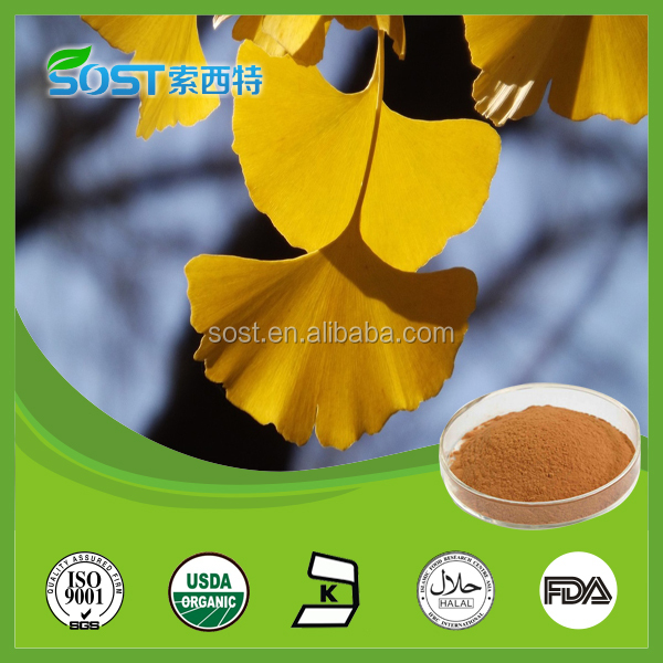 Supplying pure natural ginkgo biloba extract