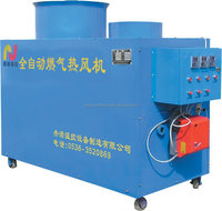 Induatrial workshop long life time gas fired hot air heater