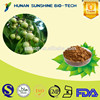 High quality Soapberry extract / Soapnut Extract Powder 70% Soapberry saponins