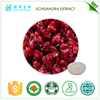 Providing energy Hot sell schisandra berries plant extract