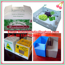 PP plastic corrugated boxes