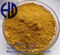 China Factory powder yellow pigment YX311 Iron Oxide for construction