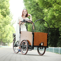 CE alumimum frame three wheel cargo electric tricycle mobility scooter with pedal sensor