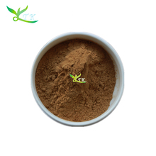 Fresh Bamboo leaves Extract Powder