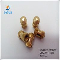 ISO9001 Certificat China Factory Professional injection mold brass nut