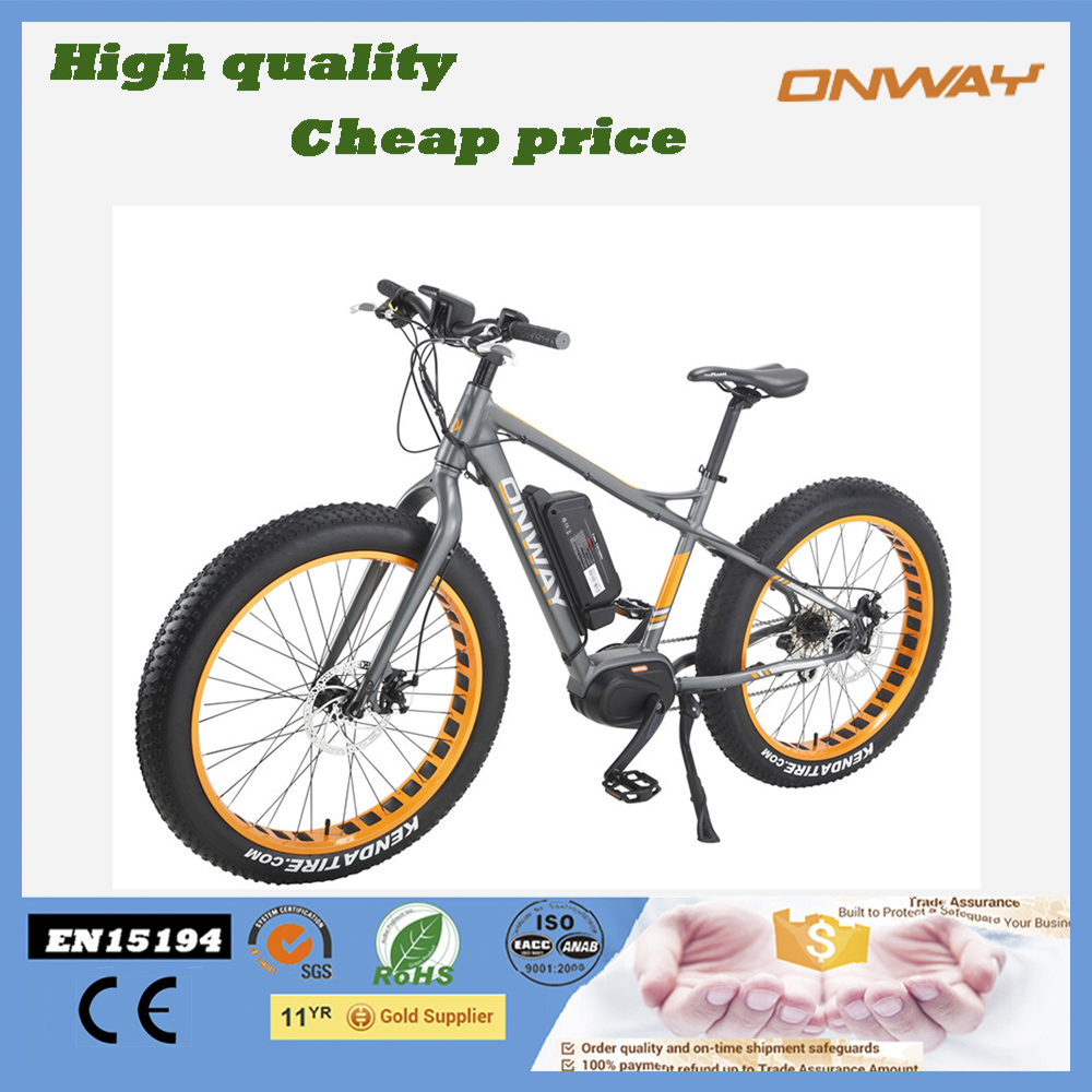 Good performance MTB central motor electric bike for adult