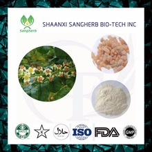 Olibanum Extract Frankincense Extract 65% Boswellic Acid powder