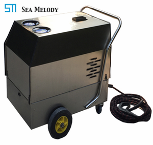 China low price mobile portable steam waterless car wash equipment
