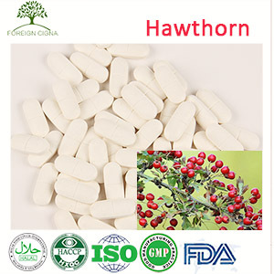 Weight Loss Natural Supplement Hawthorn Fruit Berry Extract Tablet