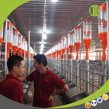 Livestock Equipment Automatic Chain Pig Feeding System for Pig Farm House