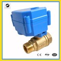 110V CR04 CWX-15N 2nm brass motorized water valve for irrigation