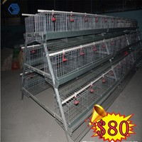 cheap plastic chicken cage(anping factory china mainland)