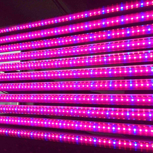 12W 24W T8 LED grow light tube pant Vegetable cultivation Fruit cultivation Water cultivation