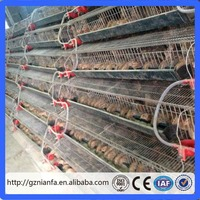 Used in America poultry farm 6 tiers metal quail cage for sale (guangzhou factory )