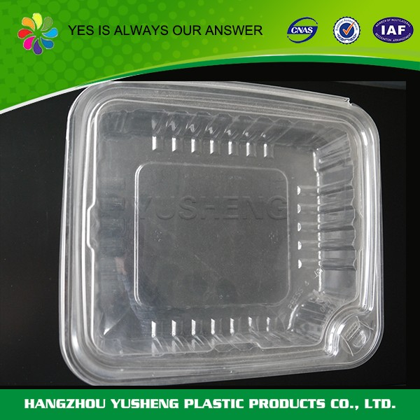 Custom shape biodegradable disposable plastic food boxes with lids