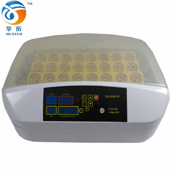 Best design new mini chicken egg incubator 32 eggs used chicken incubator for sale in India